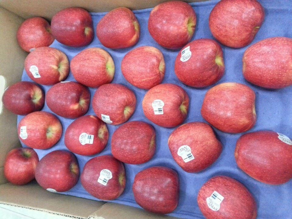 شانه میوه مقوایی سیب