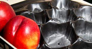 شانه میوه شلیل