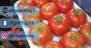 خرید و فروش شانه میوه گوجه