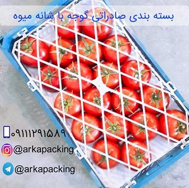 بسته بندی گوجه با شانه میوه