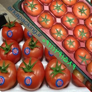 انواع شانه میوه گوجه
