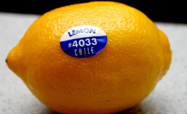 خرید و فروش برچسب میوه