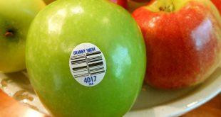 سایت خرید انواع لیبل میوه