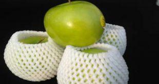 فروش انواع فوم توری میوه