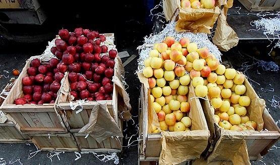 قیمت خرید پوشال میوه ای